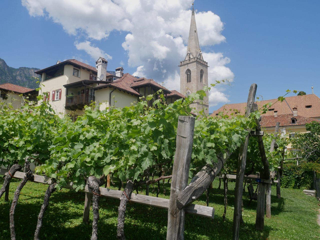 3 jours dans le Sud-Tyrole: randonnée de Caldaro/Kalten
