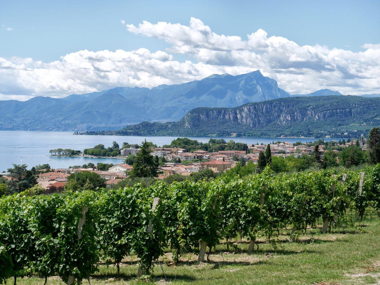 visite du lac de Garde en 3 jours: les vignobles de Bardolino