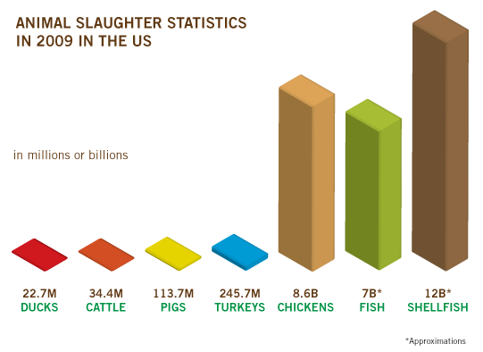 2009-slaughter-stats2
